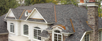 Best specialty shingle roof camelot