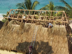 beach house built thatch roofing materials